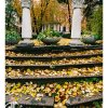 215 Images of Odessa (095)
