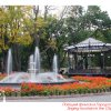 215 Images of Odessa (170)